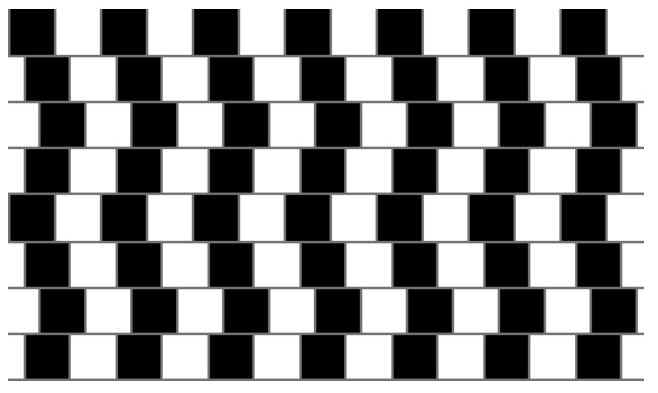 Optical Illusions And Teasers